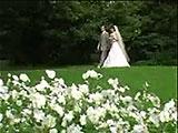 Свадебный клип Питер-Москва